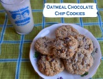 Oatmeal Chocolate Chip Cookies // Pale Yellow