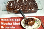 mississippi mud mocha brownie // pale yellow