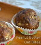 Peanut Butter Oat Bites // Pale Yellow