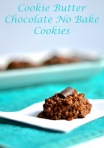 cookie butter chocolate no bake cookies | pale yellow