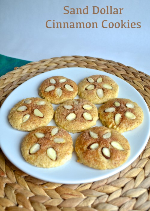 sand dollar cinnamon cookies | pale yellow