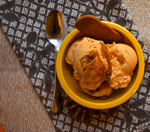 Pumpkin Pie Ice Cream | Pale Yellow