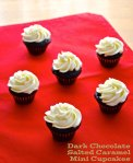 dark chocolate salted caramel mini cupcakes | pale yellow