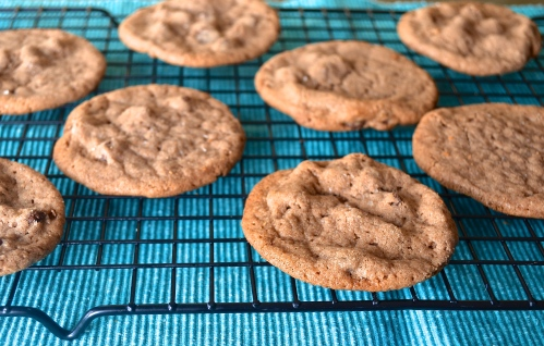 Chocolate Hazelnut Chocolate Chip Cookies | Pale Yellow