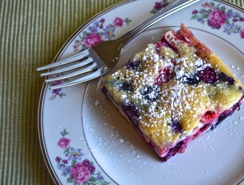 Berry Pudding Cake | Pale Yellow